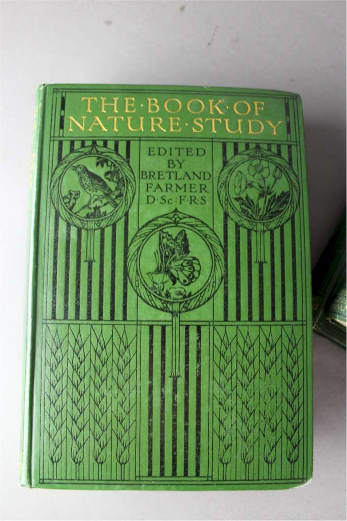 Art And Craft Book Cover : Set of six books with arts and crafts covers quot the book